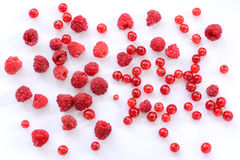 Red berry fireworks Royalty Free Stock Images
