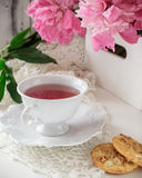 Red berry or fruit tea in teacup with peony. Red berry or fruit tea in white porcelain teacup on a white table with peony bouquet and cookies. Mothers day Stock Photos