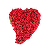 Red berry Heart Stock Image