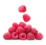 Red berry raspberry isolated Stock Images