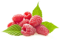 Red berry raspberry Royalty Free Stock Photo