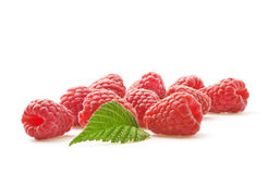 Red berry raspberry Royalty Free Stock Image