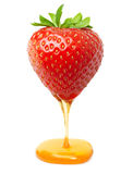 Red berry strawberry with caramel or honey Stock Images