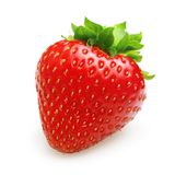 Red berry strawberry isolated royalty free stock photo
