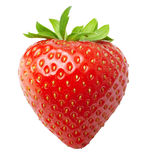 Red berry strawberry isolated Royalty Free Stock Photos