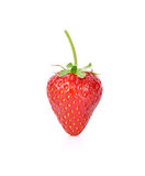 Red berry strawberry isolated on white background. Red berry strawberry isolated on white Royalty Free Stock Photography