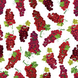 Red berry vector seamless pattern Stock Photo