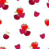 Red  berry Royalty Free Stock Photography
