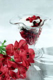 Red Berry With Cream Close Up Royalty Free Stock Photo
