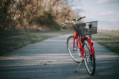 Red bicycle with a basket on the back on a thin cement road in a field in the countryside royalty free stock images