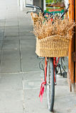 Red bicycle with basket Stock Image