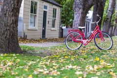 Red bicycle in garden Stock Photos