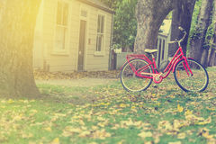 Red bicycle in garden Royalty Free Stock Images