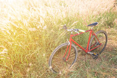 Red bicycle in morning light Stock Photos