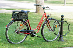 Red bicycle parked. On green grass Royalty Free Stock Photos