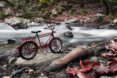 Red bicycle Stock Photos