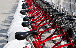 Red bicycles. Row of red bicycles for rent Royalty Free Stock Photos