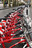 Red bicycles Stock Images