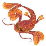 Red big fish. Big red fish, isolated, gold shiny, floating Royalty Free Stock Photo