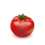 Red big fresh tomato Royalty Free Stock Images