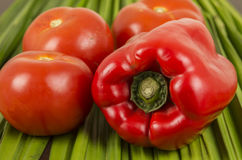 Red big pepper with three brights tomatoes on a green vegetables surface Royalty Free Stock Image