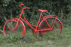Red Bike in the Foresst Royalty Free Stock Photos