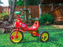 Red bike tricycle in the garden park playground at home flare light green grass. royalty free stock image