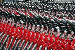 Red Bikes. Several rows of red bicycles stock images