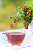 Red bilberry and blueberries with tea on wood Royalty Free Stock Photo