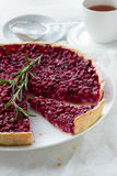 Red bilberry tart with a cup of tea Stock Photography