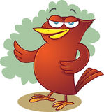 Red bird. Illustration of red bird in standing position Royalty Free Stock Photo