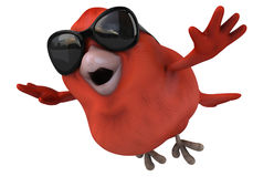 Red bird Stock Images