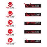 Red Bird on circle and black banner logo vector design Stock Photo