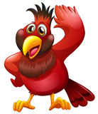 A red bird Stock Image