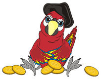 Red bird and money. Pirate parrot in black hat sit around of many golden cents Stock Images