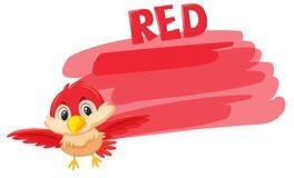 A red bird and painting color vector illustration