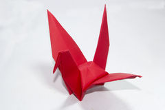 Red bird. Of red bird Paper Royalty Free Stock Photo