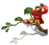 A red bird watching the nest Royalty Free Stock Images