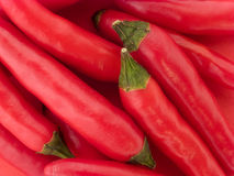 Red birdeye chilies Stock Photos