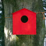 Red birdhouse against beech tree Stock Photos
