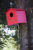 Red birdhouse against beech tree Royalty Free Stock Image