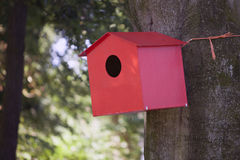 Red birdhouse against beech tree Royalty Free Stock Photos