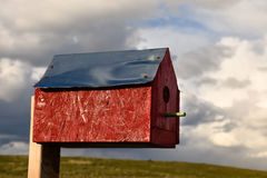 Red Birdhouse royalty free stock image