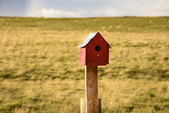 Red Birdhouse With Green Background Stock Photography
