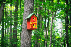 Red birdhouse on a tree Royalty Free Stock Photo