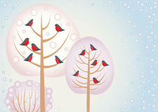 Red birds on the winter trees Stock Photo