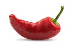 Red bitter pepper Stock Photos