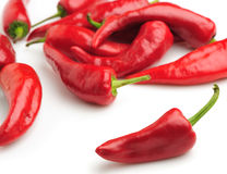 Red bitter pepper Stock Image