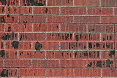 Red and black asphalt shingled wall Royalty Free Stock Photos