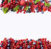 Red and black-blue fruits and berries. Ripe currants, blueberries, strawberries, raspberries, blackberries on white background. Be. Rries at border of image with Royalty Free Stock Photos